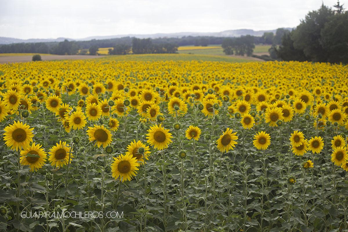 Sur de Francia para mochileros