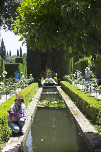 canales de agua alhambra