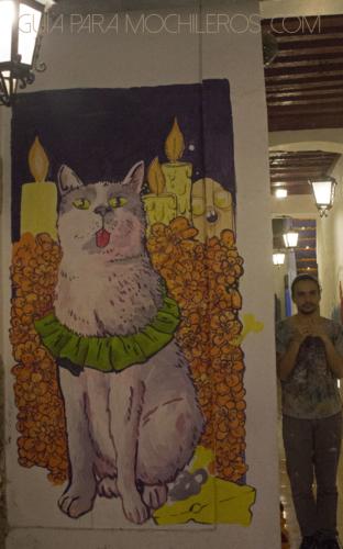 mural gato hostal